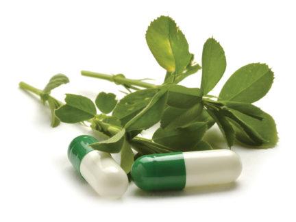 Pharmaworks Nutraceutical Industry